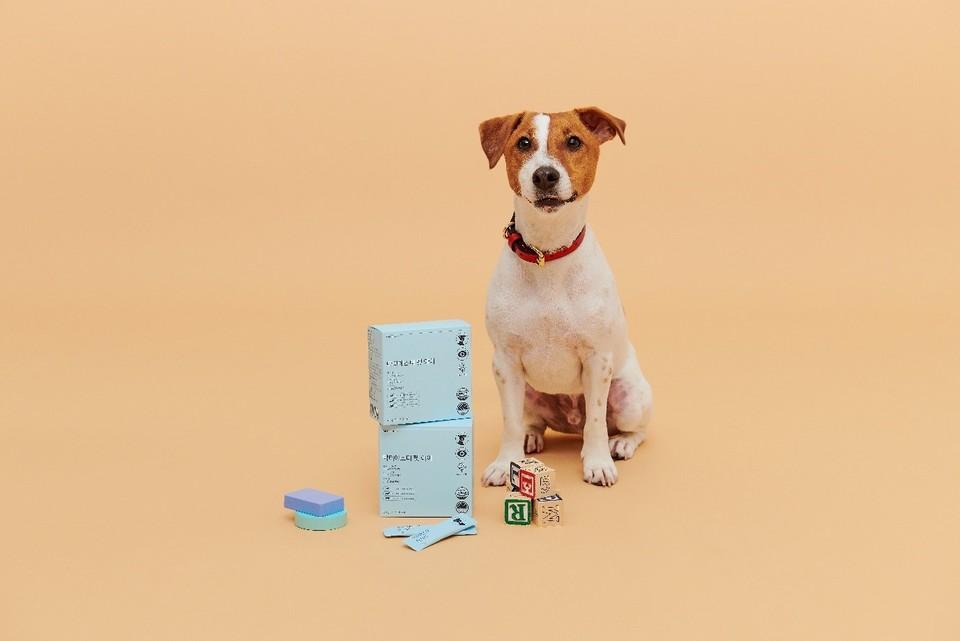 건강기능식품 전문기업 에스더포뮬러(대표 여에스더)가 반려동물 영양제 브랜드 '닥터에스더 펫'을 론칭한다고 22일 밝혔다.반려견의 눈 건강을 위한 눈 영양제 '닥터에스더 펫 아이'. 사진=에스더포뮬러